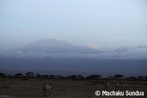 Majestic Mt. Kilimanjaro